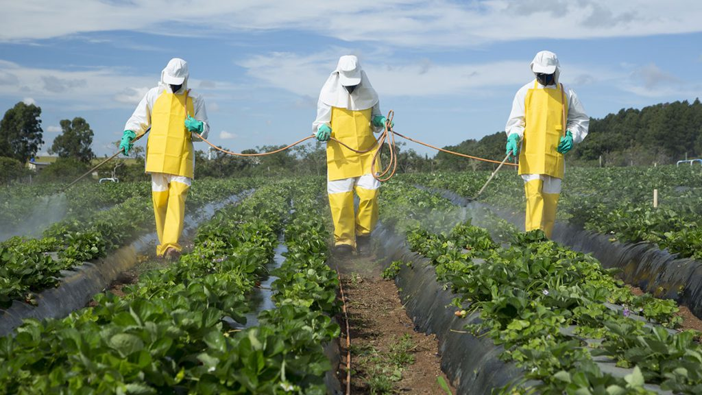 Pesticide Licensing Compliance System Project